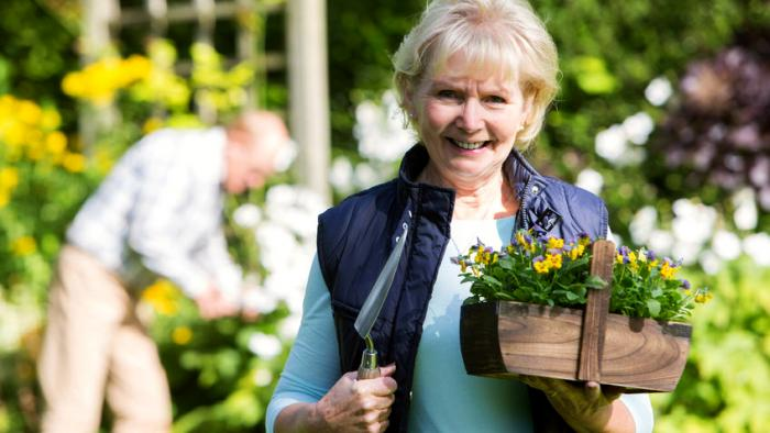 Happy senior aged gardener holding some flowers with husband gardening in the background